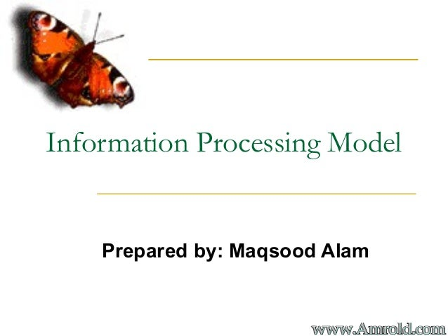 Information Processing ModelPrepared by: Maqsood Alam