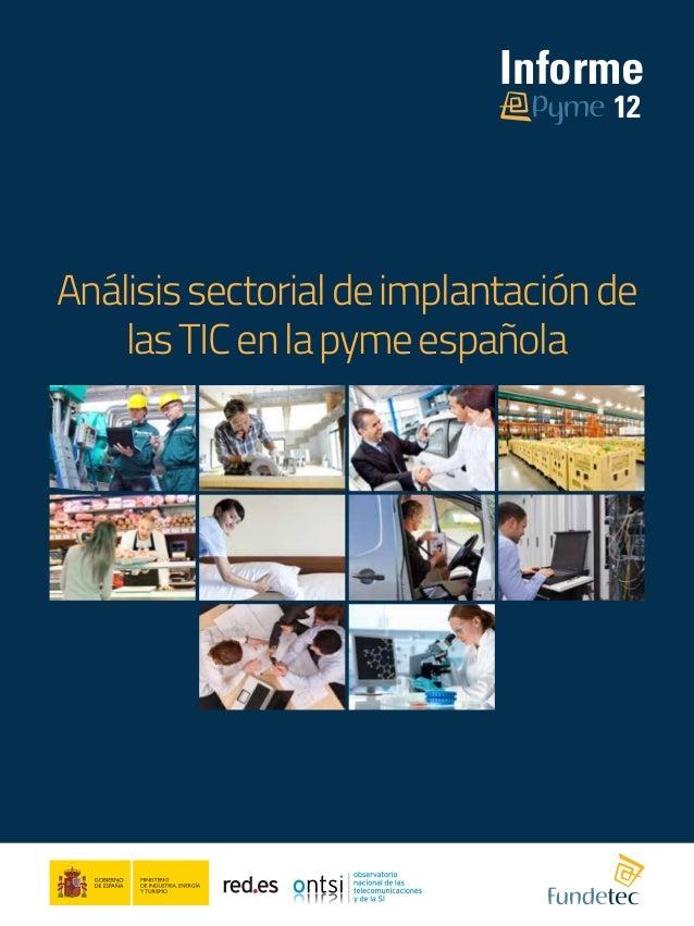 Informe                                   12Análisis sectorial de implantación de    las TIC en la pyme española