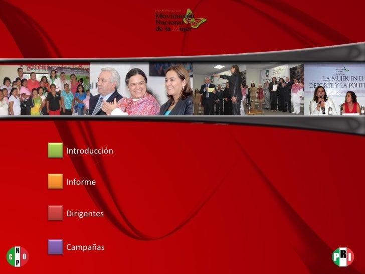 Introducción Dirigentes Informe Campañas