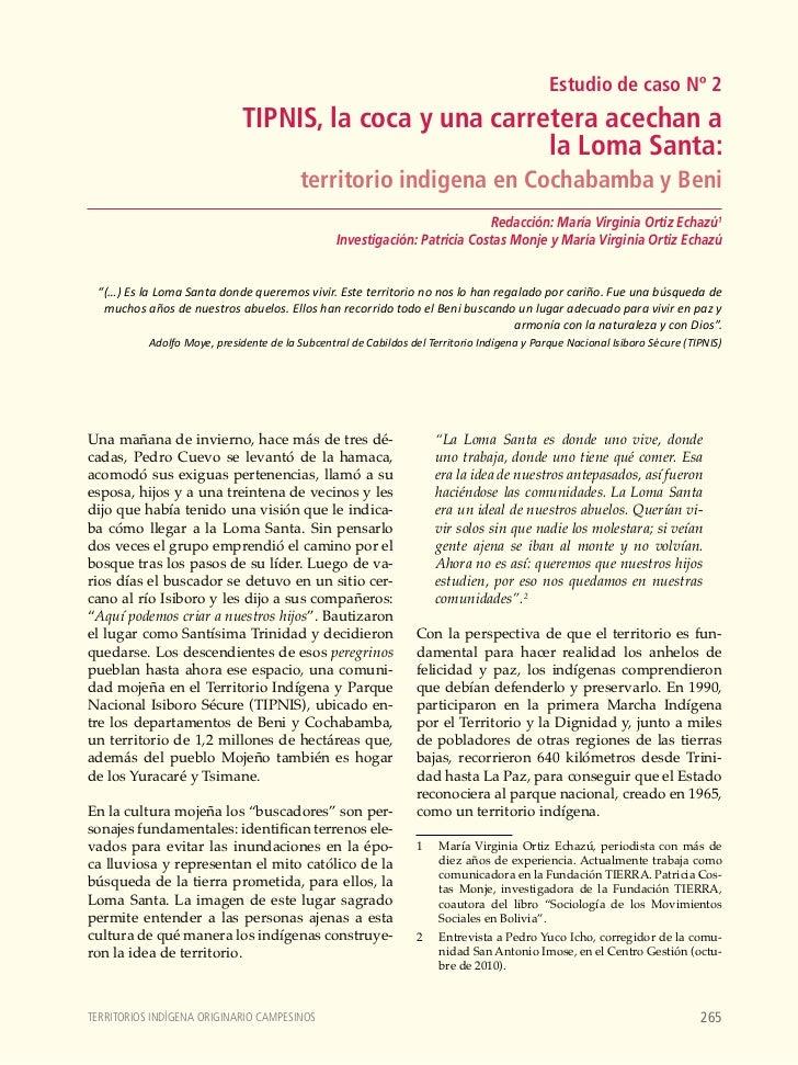 TIPNIS, la coca y una carretera acechan a la Loma Santa: territorio indigena en Cochabamba y Beni