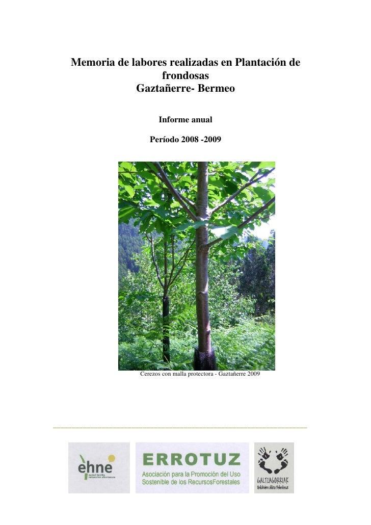Memoria de labores realizadas en Plantación de                      frondosas                 Gaztañerre- Bermeo          ...