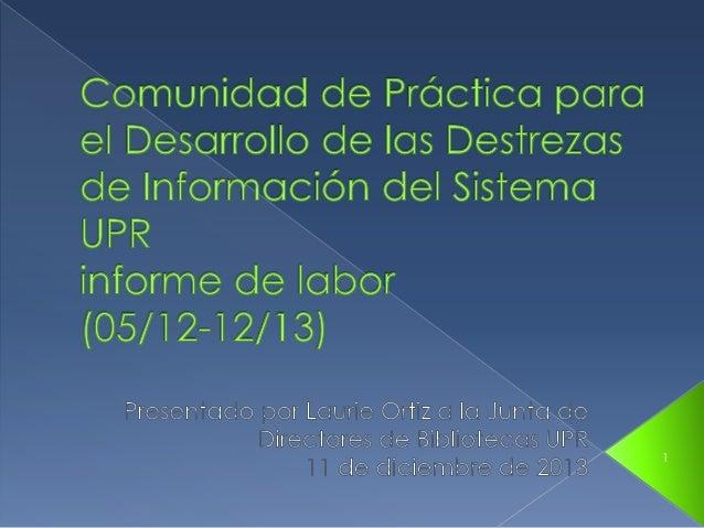 Informe Comunidad Práctica Destrezas Información 2013