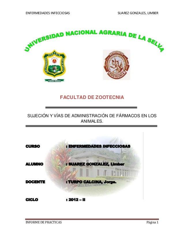 ENFERMEDADES INFECCIOSAS                         SUAREZ GONZALES, LIMBER                   FACULTAD DE ZOOTECNIASUJECIÓN Y...