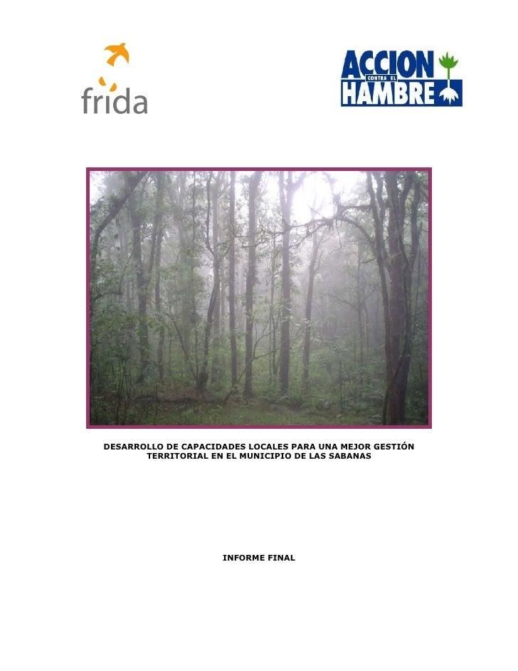 Informe Final Desarrollo de capacidades locales