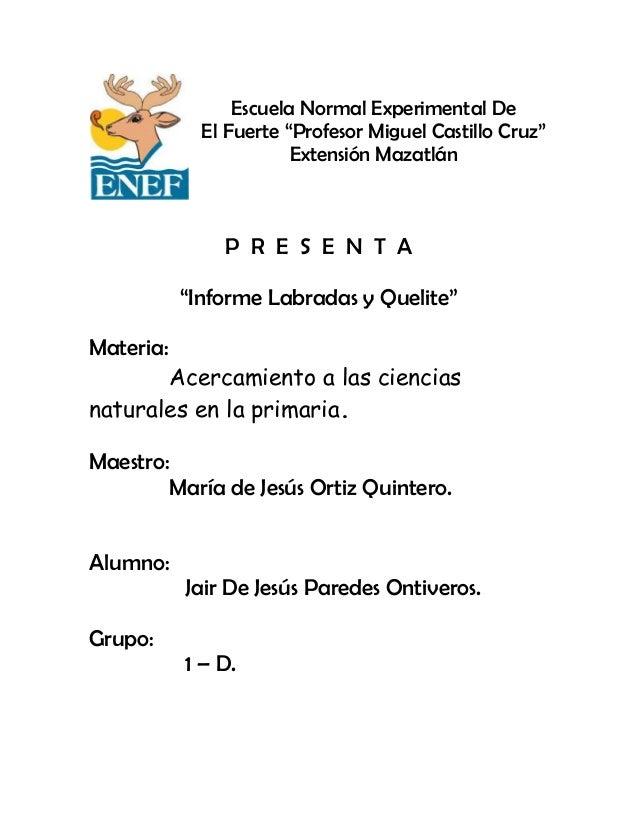 """Escuela Normal Experimental DeEl Fuerte """"Profesor Miguel Castillo Cruz""""Extensión MazatlánP R E S E N T A""""Informe Labradas ..."""
