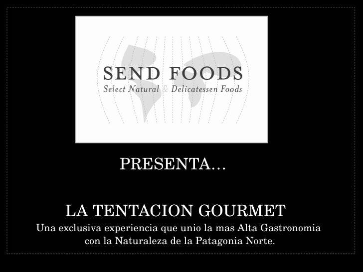 Informe La Tentacion Gourmet Mas Chico