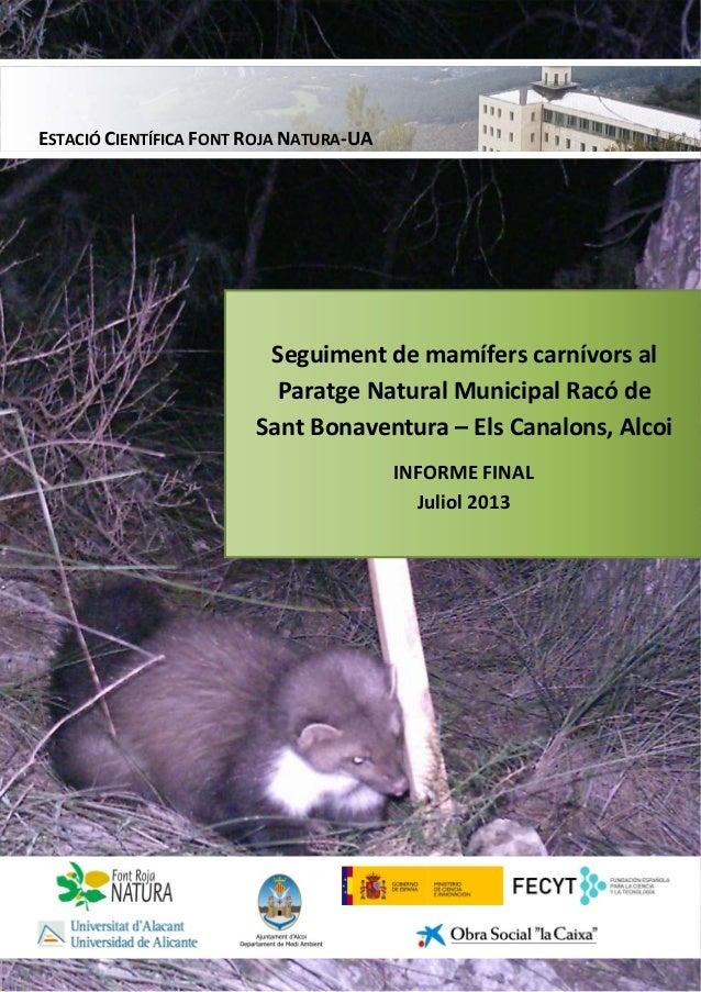 Informe - Seguiment de mamífers carnívors al Paratge Natural Municipal Racó de Sant Bonaventura - Els Canalons, Alcoi - Informe final