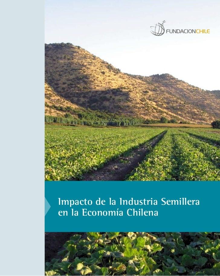 Impacto industria semillera chilena