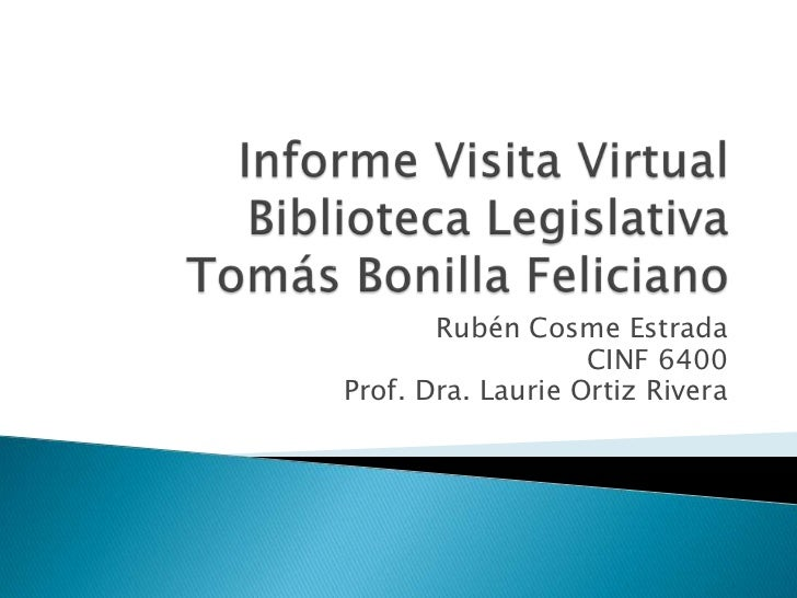 Informe visita virtual