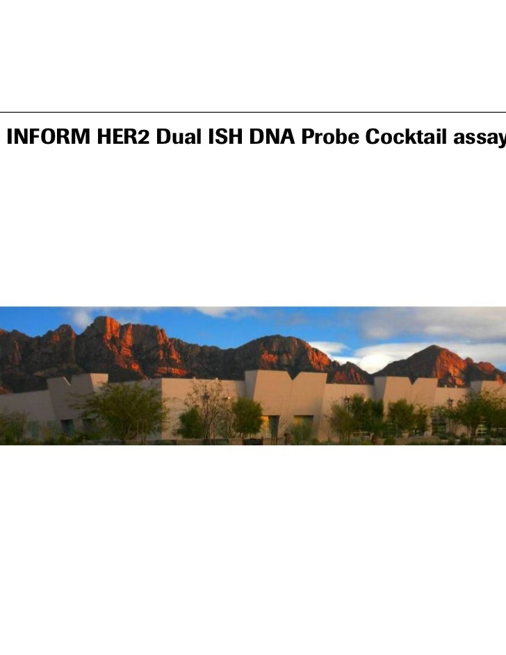 INFORM HER2 Dual ISH DNA Probe Cocktail assay                      Image Here                                             ...