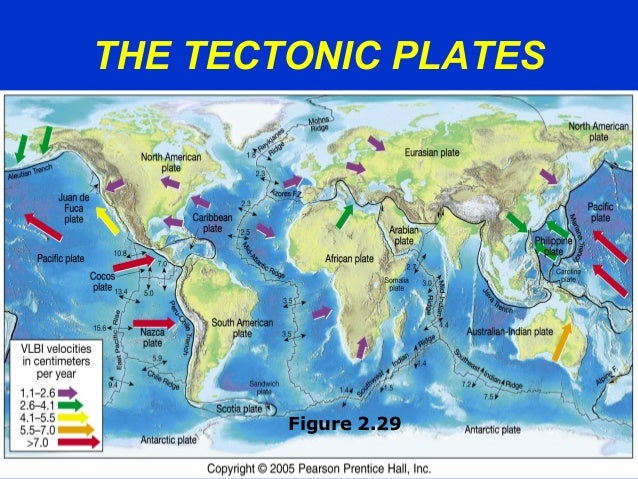 THE TECTONIC PLATES Figure 2.29