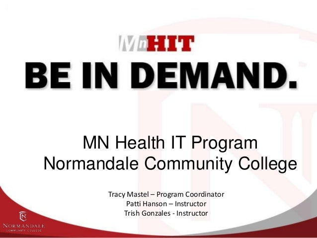 MN Health IT Info session 8 28-13