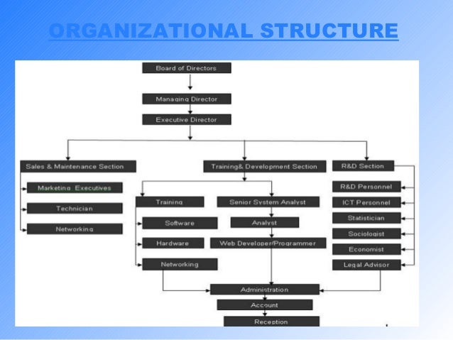 study of organisation structure and design essay