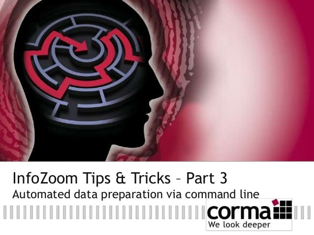 InfoZoom Tips & Tricks – Part 3 Automated data preparation via command line
