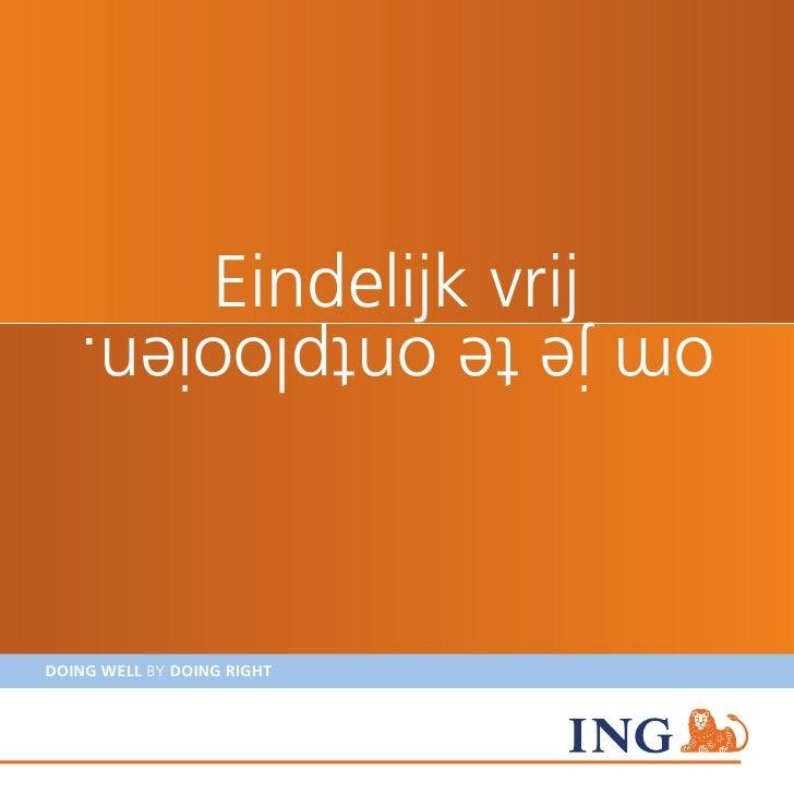 Brochure Bachelors NL