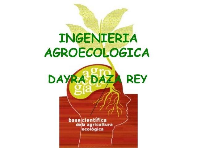 INGENIERIA AGROECOLOGICA DAYRA DAZA REY