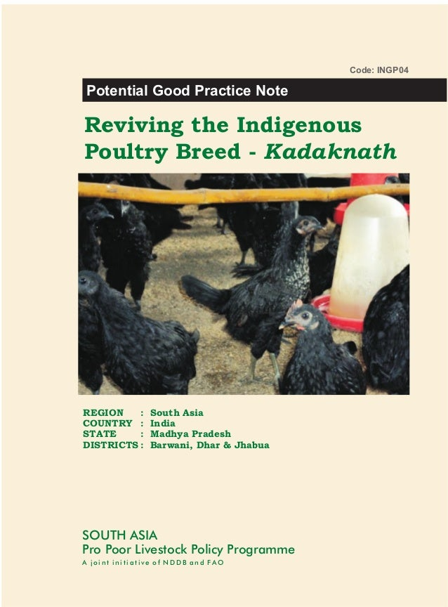 Code: INGP04Potential Good Practice NoteReviving the IndigenousPoultry Breed - KadaknathREGION    :     South AsiaCOUNTRY ...