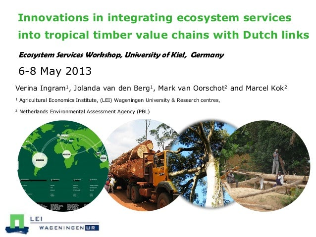 Innovations in integrating ecosystem services into tropical timber value chains with Dutch links Ecosystem Services Worksh...