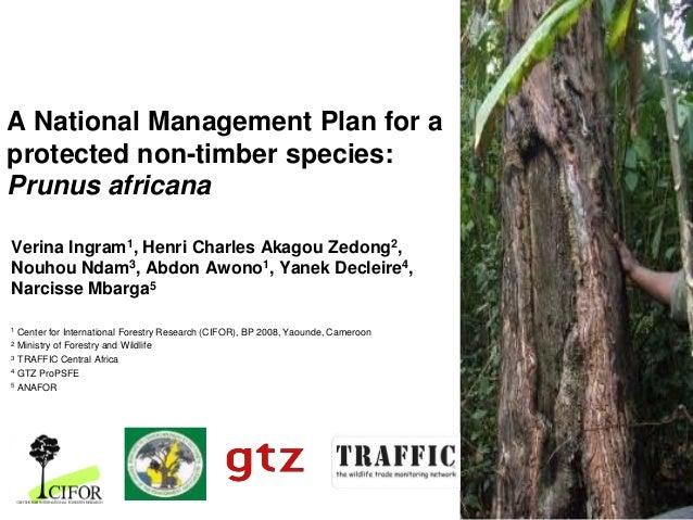 A National Management Plan for a protected non-timber species: Prunus africana Verina Ingram1, Henri Charles Akagou Zedong...