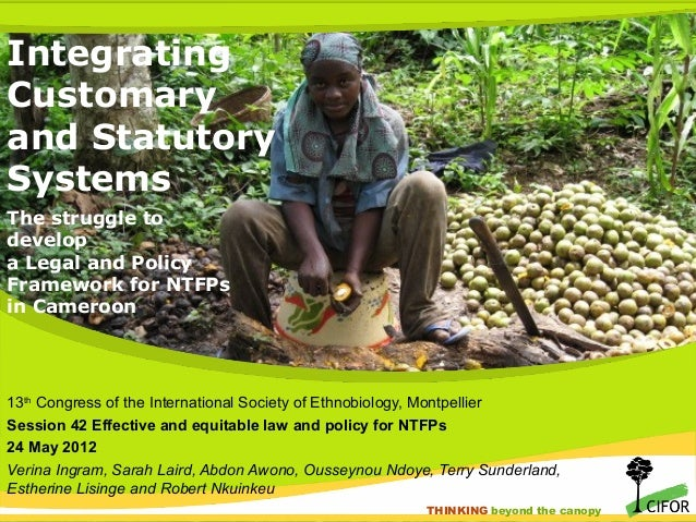 Integrating customary and legal systems for forest product governance, Cameroon