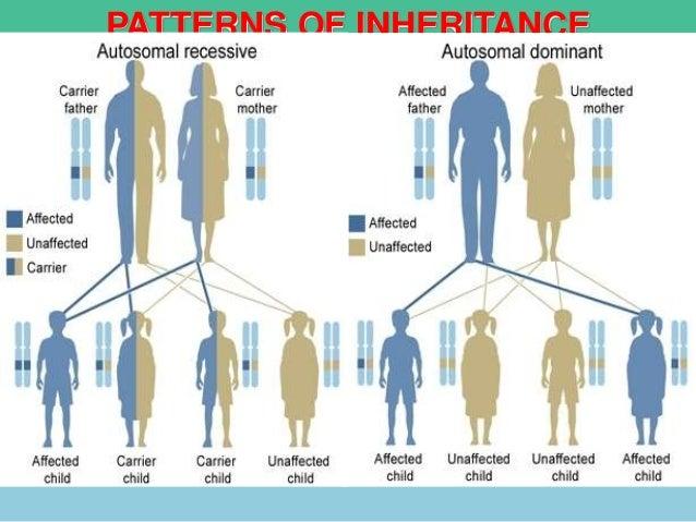 Homework 4040 Other Patterns Of Inheritance Devcool40 Cool 113 Other Patterns Of Inheritance