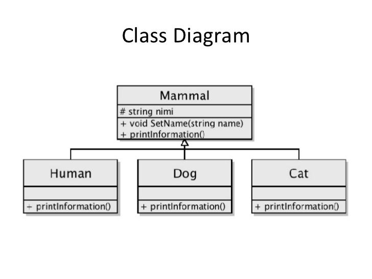 c    inheritance  composition  polymorphism       class diagram
