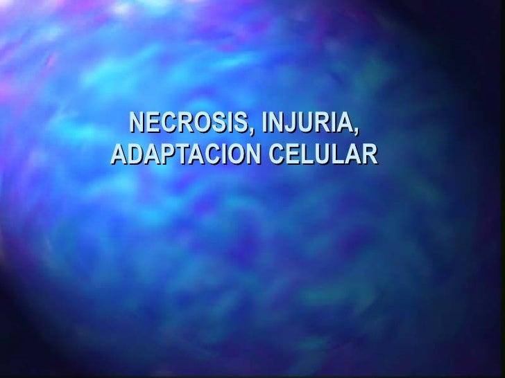 NECROSIS, INJURIA, ADAPTACION CELULAR