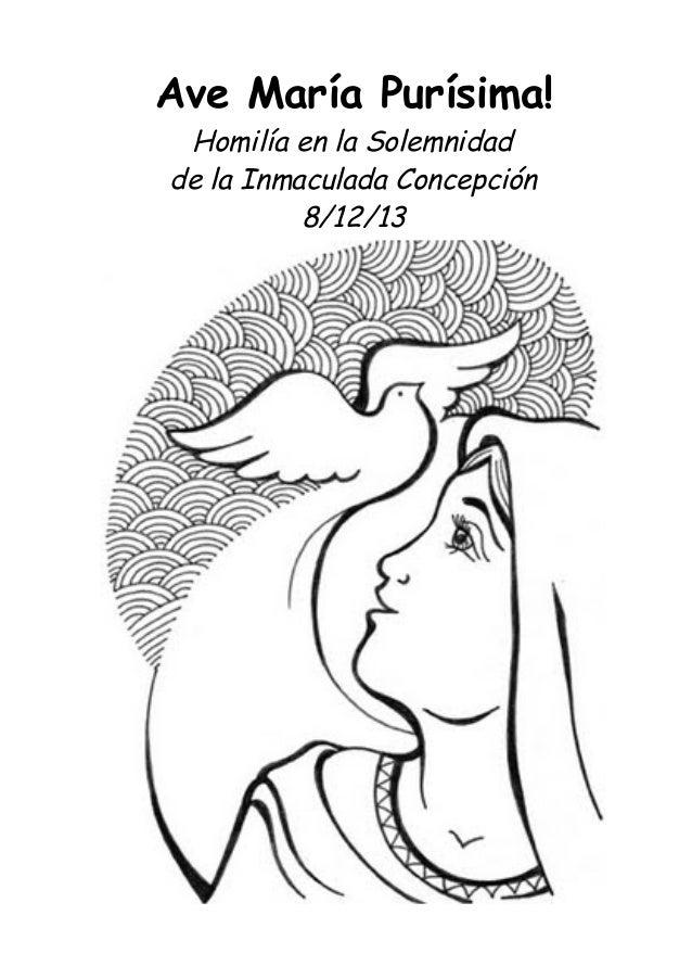 Ave María Purísima! Homilía en la Solemnidad de la Inmaculada Concepción 8/12/13