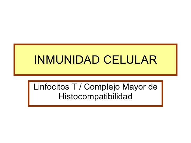 INMUNIDAD CELULAR Linfocitos T / Complejo Mayor de Histocompatibilidad
