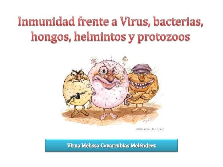 Inmunidad frente a Virus, bacterias, hongos, helmintos y protozoos<br />Virna Melissa Covarrubias Meléndrez<br />