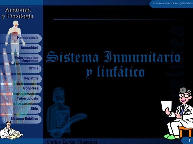 Marlon Burga Villalobos Sistema linfático Sífilis Inmunidad Homeostasis Hepatitis Gonorrea Tuberculosis Sida Enfermedades ...