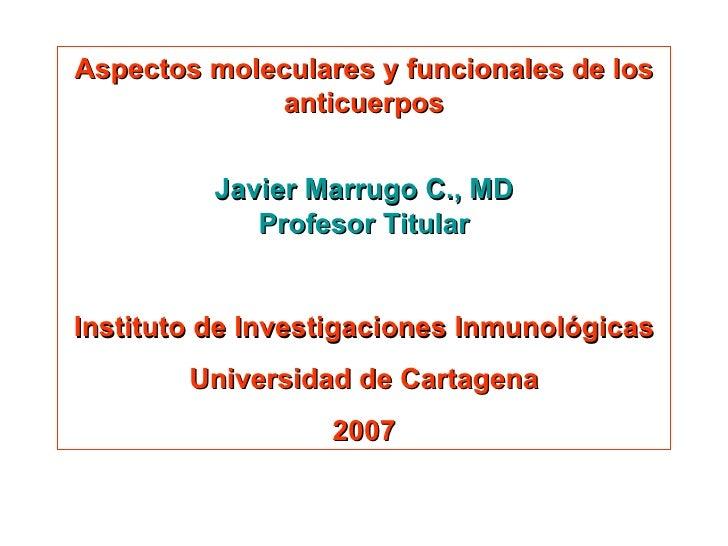 Aspectos moleculares y funcionales de los anticuerpos Javier Marrugo C., MD Profesor Titular Instituto de Investigaciones ...