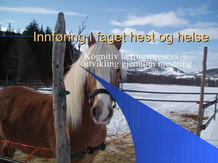Innføring i faget hest og helse         Kognitiv læringsprosess =         utvikling gjennom mestring