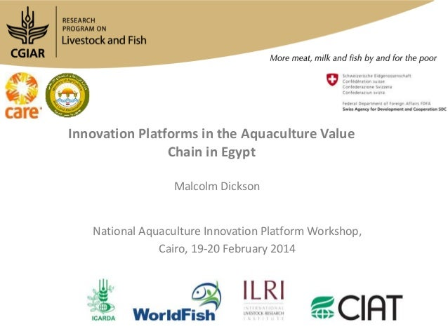 Innovation Platforms in the Aquaculture Value Chain in Egypt Malcolm Dickson  National Aquaculture Innovation Platform Wor...
