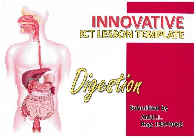 Innovative lesson template - Anju L