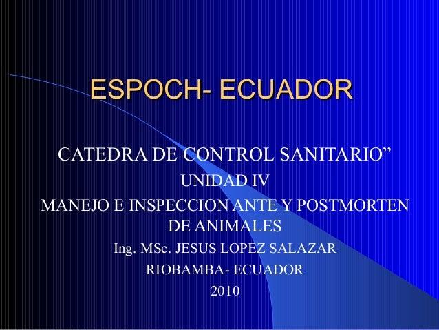 """ESPOCH- ECUADORESPOCH- ECUADOR CATEDRA DE CONTROL SANITARIO"""" UNIDAD IV MANEJO E INSPECCION ANTE Y POSTMORTEN DE ANIMALES I..."""