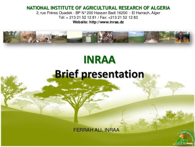 INRAA Brief presentation FERRAH ALI, INRAA NATIONAL INSTITUTE OF AGRICULTURAL RESEARCH OF ALGERIA 2, rue Frères Ouadek - B...