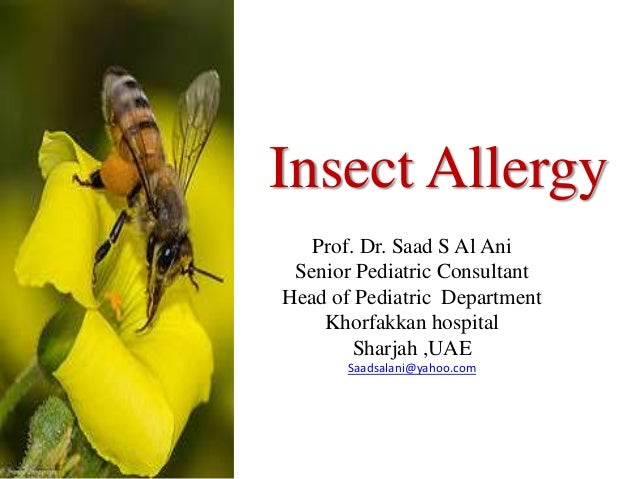 Insect AllergyProf. Dr. Saad S Al AniSenior Pediatric ConsultantHead of Pediatric DepartmentKhorfakkan hospitalSharjah ,UA...