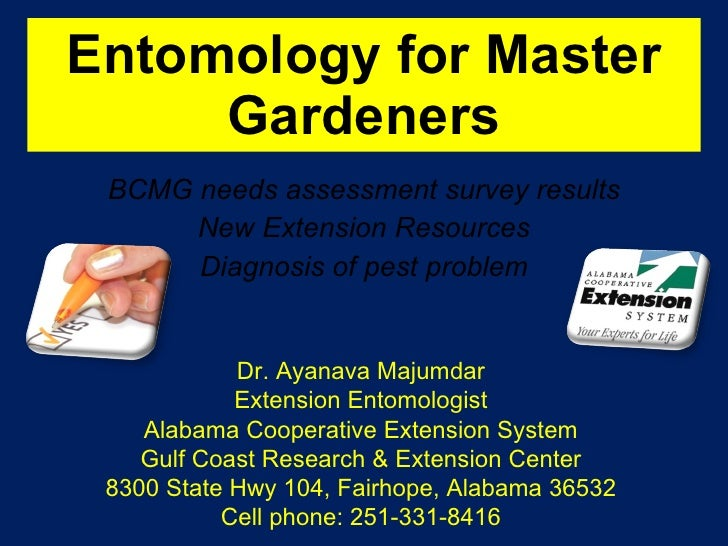 Entomology for Master Gardeners BCMG needs assessment survey results New Extension Resources Diagnosis of pest problem Dr....