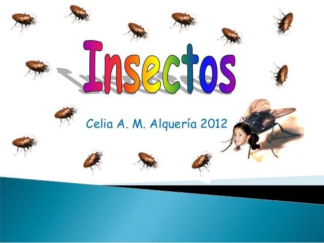 Celia A. M. Alquería 2012