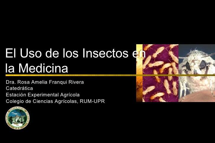 Insectos En La Medicina 2009