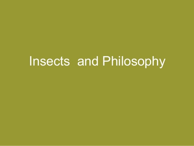Insects and Philosophy