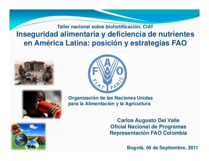 Taller nacional sobre biofortificación, CIATInseguridad alimentaria y deficiencia de nutrientes  en América Latina: posici...