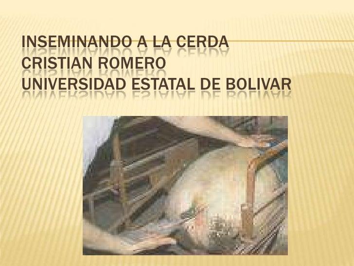 INSEMINANDO A LA CERDACRISTIAN ROMEROUNIVERSIDAD ESTATAL DE BOLIVAR<br />