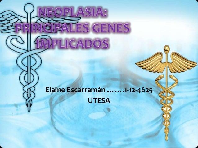 Elaine Escarramán …….1-12-4625 UTESA