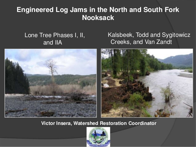 Engineered Log Jams in the North and South Fork Nooksack Lone Tree Phases I, II, and IIA Kalsbeek, Todd and Sygitowicz Cre...