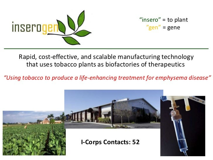 """insero"" = to plant                                                    ""gen"" = gene     Rapid, cost-effective, and scalabl..."