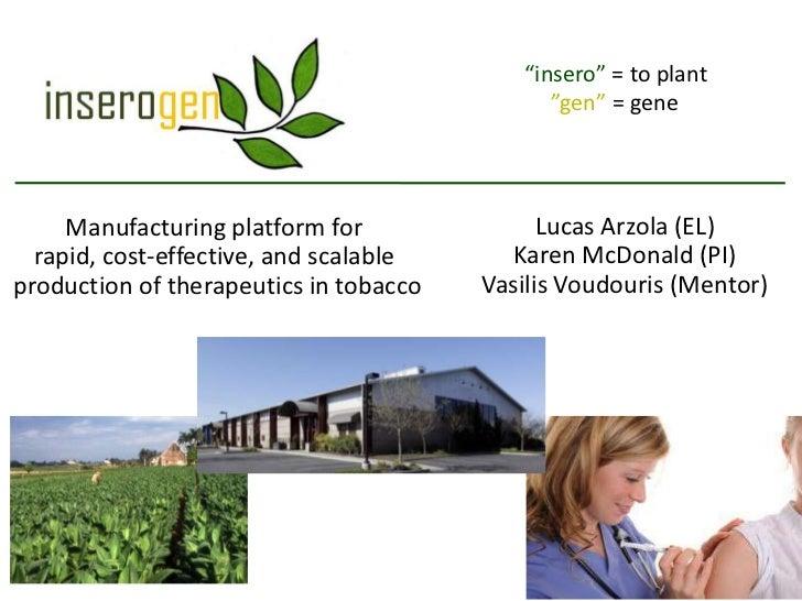 """insero"" = to plant                                              ""gen"" = gene     Manufacturing platform for              ..."