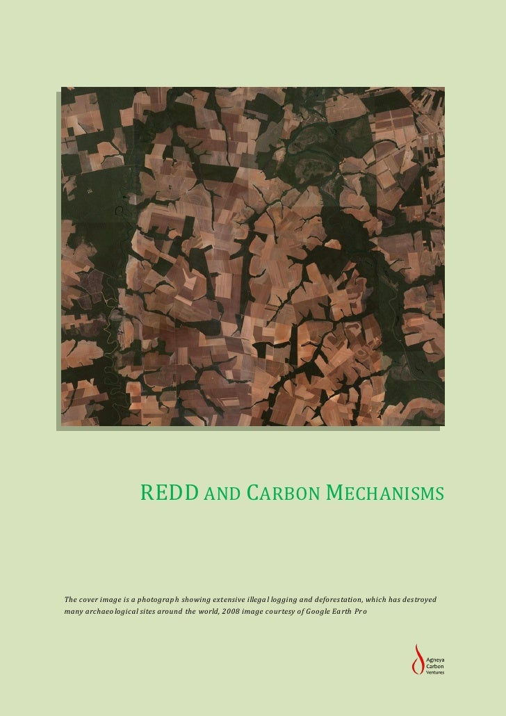 REDD AND CARBON MECHANISMSThe cover image is a photograph showing extensive illegal logging and deforestation, which has d...