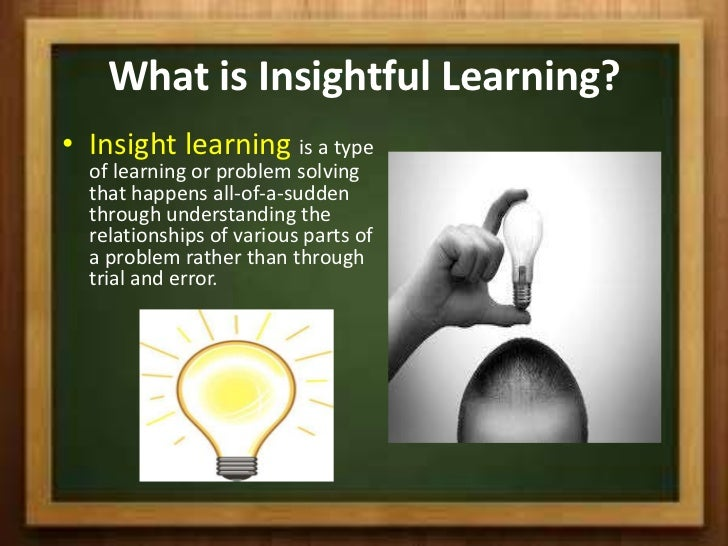 wolfgang kohler insight learning pdf